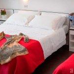 Hotel Torre #Hotel #Torre #Bellaria