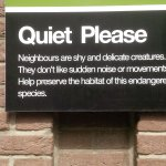clever, quirky signage throughout hotel adds to the 'cool' feel.