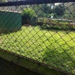 Photo of Uganda Wildlife Education Centre