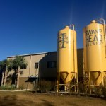 Visit one of several local craft breweries in Gaineville such as Swamp Head Brewery