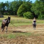 Vous aurez le palisir de voir Alexandra et ses chevaux