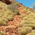 Stufen zum Kings Canyon hoch