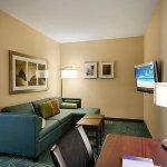 Foto de SpringHill Suites Omaha East/Council Bluffs, IA