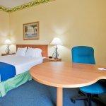 Photo of Holiday Inn Express Hotel and Suites Orlando-Lake Buena Vista South