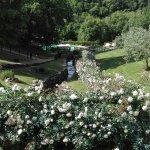 Foto de Terme di Sorano