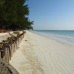 Bluebay Beach Resort and Spa Photo