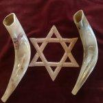 Smaller Rams Horns
