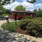 Foto de Gray Line Trolley Tours