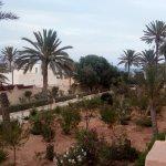 Safira Palms Foto