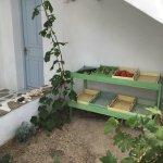 Foto de Thalassitra Village Hotel