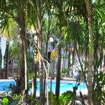 Photo de Green Tulum Cabanas & Gardens