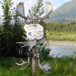 Foto de Northern Alaska Tour Company