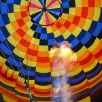 Photo de Portland Rose Hot Air Balloons