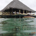 Photo of Punta Caracol Acqua Lodge