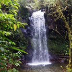 The Lost Waterfalls-Boquete