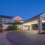 Hilton Garden Inn South Padre Island Foto