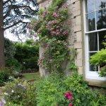 Hollybank Bed & Breakfast, details of the garden