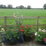 Fernlea Cottage Bed & Breakfast