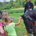 Horse tours with the National Riding Stables