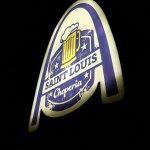 Photo de Hotel Saint Louis