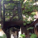 Simpang Inn Foto