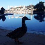 Photo of IBEROSTAR Suites Hotel Jardin del Sol