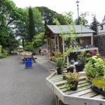 صورة فوتوغرافية لـ Dundee Botanic Garden