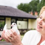 Owner Jane with one of her beautiful baby doves