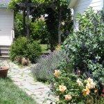 Garden Cottage path