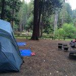 LARGE area campsite