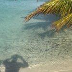 La mer, les requins, la plage