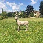 Borgo Poggio Bianco ภาพ