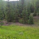 Elk Lakes Provincial Park