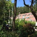 Hôtel en forêt