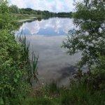 Foto de Hinchingbrooke Country Park