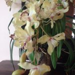 Fresh Orchids in the Lobby