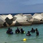 Фотография Pura Vida Diving
