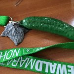 Finisher Medaille