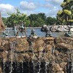 Fota Island Resort Foto