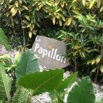 Le Papillon Image