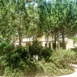 Photo of Is Arenas Resort
