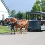 Carriage Rides available