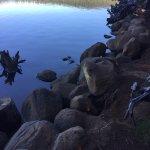 Lake of the Woods Resort Foto