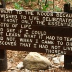 Thoreau's intent at Walden Pond