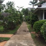 King's Garden Resort Photo