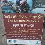 Foto de Wapi Resort