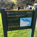 Great place wonderful tour guide. A must for anyone visiting the north island