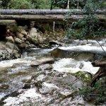 Timber bridge leading to Ralphs falls.