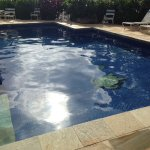 This photo doesn't do the pool design justice - beautiful cobalt blue tiles embedded turtles in