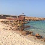 Photo de The Turtle Beach Resort (Ras al Hadd)